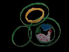 Anneau cerceau cercle rond papier bois bambou gabarit quilling paperolle vert petit grand