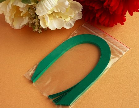 Bande papier quilling loisir creatif vert sapin