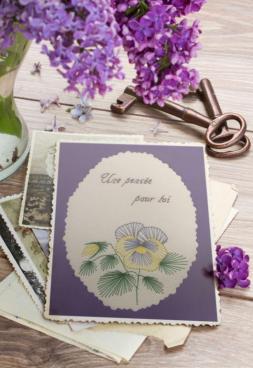 Carte a broder pensee fleur printemps loisir creatif eugenie