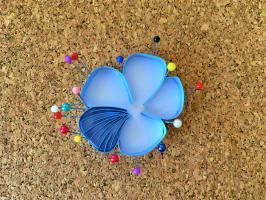Etape quilling fleur de lin nervure d un petale bande de papier colle sur la tranche