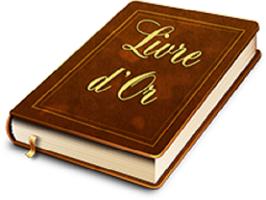 Livre or loisirs creatifs eugenie avis client quilling broderie papier