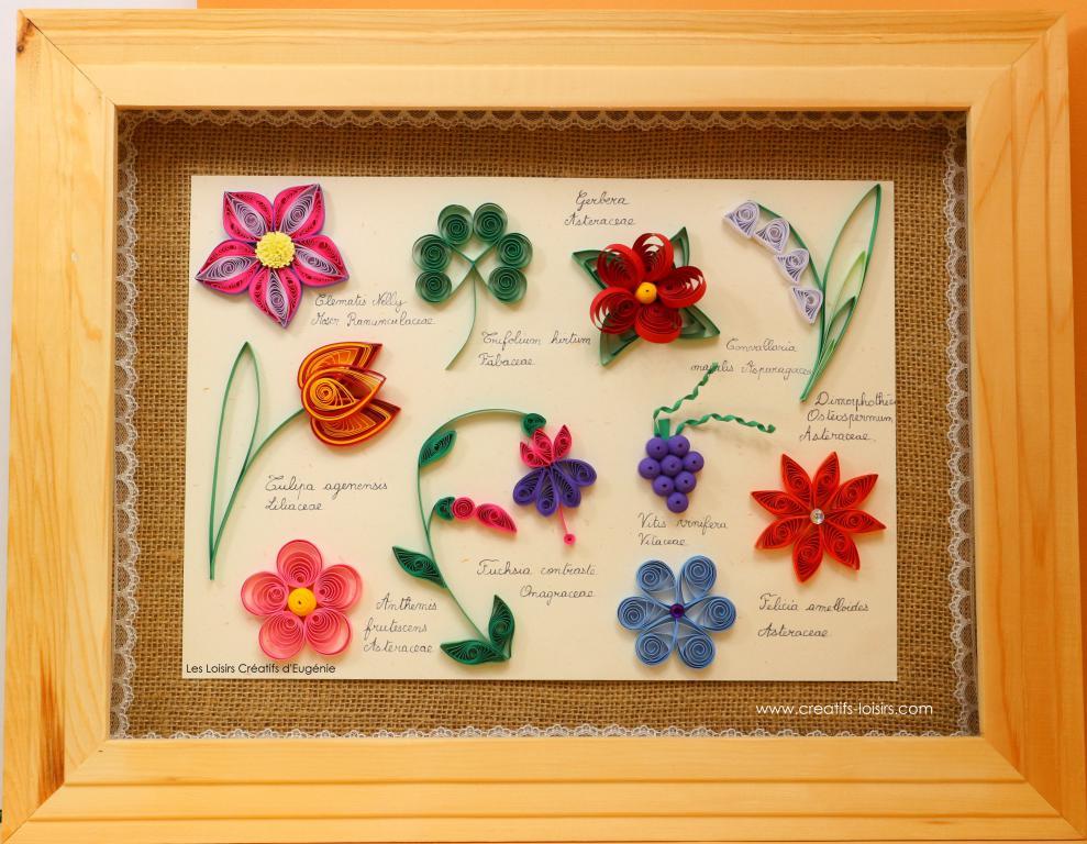Modele mise en scene kit fleurs quilling herbier loisirs creatifs eugenie