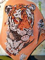 Pas japonais tigre en cours de realisation 1